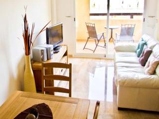 Comfortable Condo with Swing Set and Television - La Tercia vacation rentals