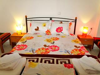 Friendly & comfy apartment at town center - Ierapetra vacation rentals