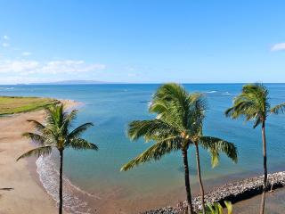 Beautiful, Extensively Upgraded Oceanfront Condo - Kihei vacation rentals