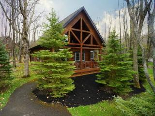 The Evergreen-Log Cabin! - Oakland vacation rentals