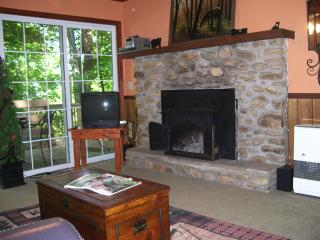 Mountain Cabin - Trees and Trails - Deep Gap vacation rentals