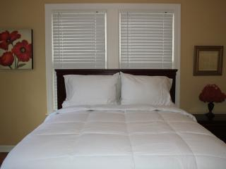 CHARM-WIFI,MINUTES FROM RiverWalk&DT,Trinity,Pearl - San Antonio vacation rentals