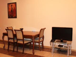 Northern Residence 1 bedroom Apt. (New Building) - Yerevan vacation rentals