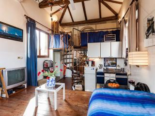 Romantic sunny studio with garden - Venice vacation rentals