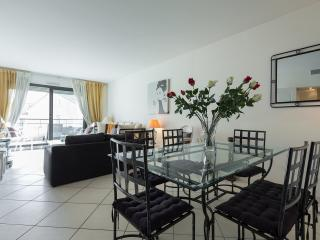 Luxury 3 bedroom apartment @ 90 rue d'Antibes - Cannes vacation rentals