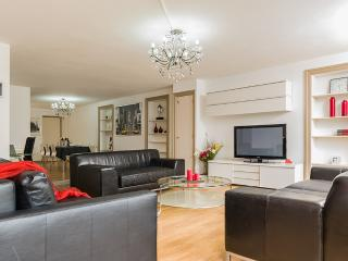 Central city apartment - Amsterdam vacation rentals