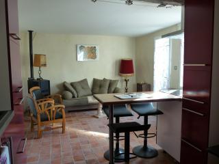 1 bedroom House with Washing Machine in Rochefort du Gard - Rochefort du Gard vacation rentals