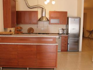 3 Bedroom Apartment on Nalbandyan (New Building) - Yerevan vacation rentals