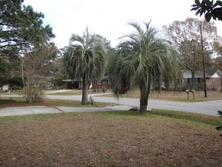 10 Min to Beach and Downtown, Close to Everything - Charleston vacation rentals