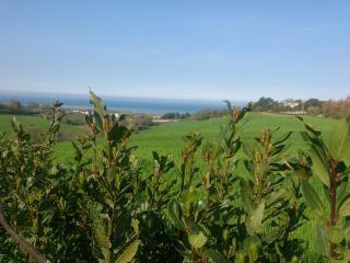 bellissimo appartamento in collina - Sant'Elpidio a Mare vacation rentals