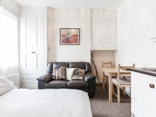 """""""Parnell"""" studio, Kilmainham - Dublin vacation rentals"""
