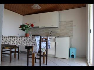 Nice 2 bedroom House in Ricadi - Ricadi vacation rentals