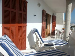 Louisa   apartment with nice sunny balcony - Colonia de Sant Jordi vacation rentals