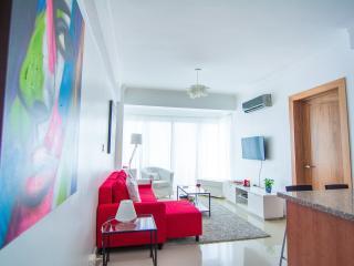 Santo Domingo City Center Apartment - Santo Domingo vacation rentals