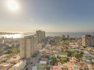 Cozy Apartment in Valparaiso with Washing Machine, sleeps 5 - Valparaiso vacation rentals