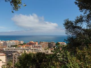 Nice Condo with Internet Access and Garden - Menton vacation rentals