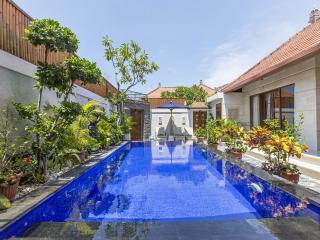 2 bedroom Villa with A/C in Sanur - Sanur vacation rentals