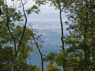 Cloudland, GA. East Brow True hand-hewn log cabin - Menlo vacation rentals