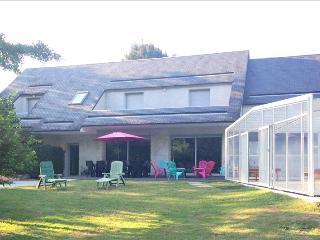 Villa heart castles area , indoor pool, tennis - Chouzy-sur-Cisse vacation rentals