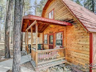 Nice Cabin with Internet Access and A/C - Ruidoso vacation rentals