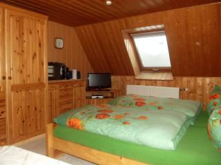 Nice Condo with Internet Access and Wireless Internet - Herrnhut vacation rentals