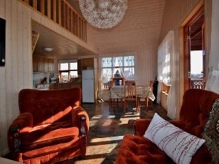 Eskilundur Cottage - next to Thingvellir - Thingvellir vacation rentals