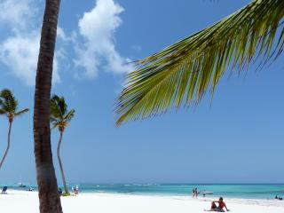Hotel Canela 9 rooms at 60 m to the beach, room 1 - Bavaro vacation rentals
