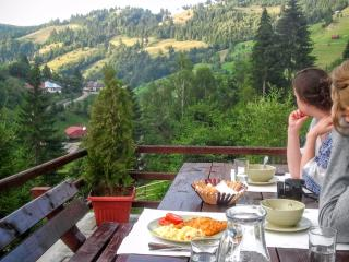 Bright House with Internet Access and Dishwasher - Moieciu vacation rentals