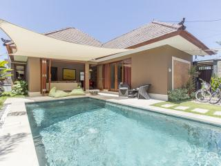 Exciting Luxury 2 bedrooms pool Villa in Sanur - Sanur vacation rentals