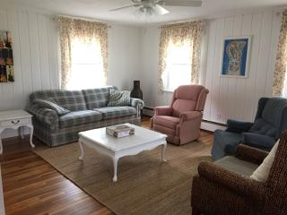 Blk from the beach & only mins to Cedar Point - Huron vacation rentals