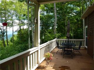 Spacious Cabin with Dishwasher and Television - Dillsboro vacation rentals