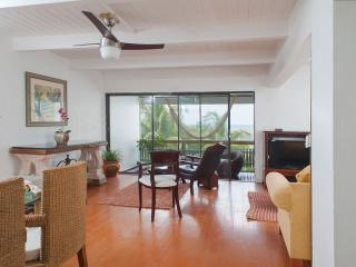 Perfect Condo with Internet Access and Satellite Or Cable TV - Nassau vacation rentals