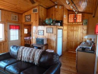 Luxury Pine Cabin on 30 Wooded Acres - Carbondale vacation rentals