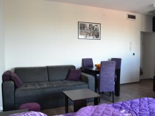 Belgrade Holiday Apartment - Belgrade vacation rentals