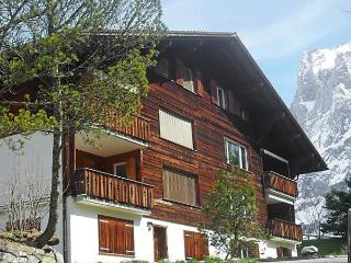 Beautiful Condo with Internet Access and Dishwasher - Grindelwald vacation rentals