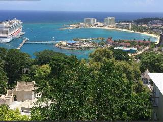 Sky Castle in columbus Heights - Ocho Rios vacation rentals