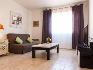 CANNES RUE D'ANTIBES Hyper Center ! - Cannes vacation rentals