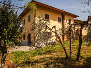 Casa Vacanze Il Tramonto sul Chianti App. VENERE - Montespertoli vacation rentals