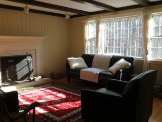 Sunny and quite house in woods near Boston - Wayland vacation rentals