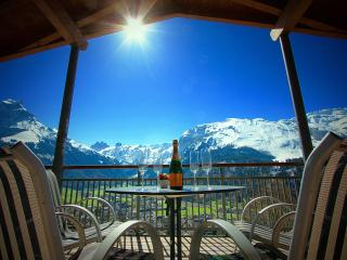 ALPHAVEN  Apartment C Breathtaking Panoramic Views - Engelberg vacation rentals
