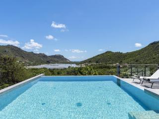 Villa Harry St Barts Rental Villa - Salines vacation rentals
