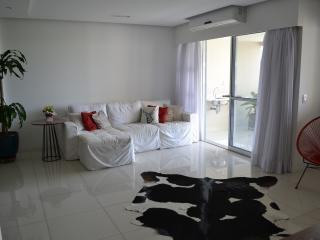 Beautiful 3 Bedrooms apartment in in Barra da Tijuca for the Olympic games! - Barra de Guaratiba vacation rentals