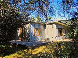 3 bedroom House with Internet Access in St Leonards - St Leonards vacation rentals