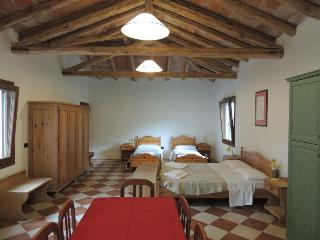 Studio apartment in a country cottage. - Torre di Mosto vacation rentals