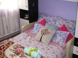 Cozy, Vampire-Free Room in Cluj-Napoca - Cluj-Napoca vacation rentals