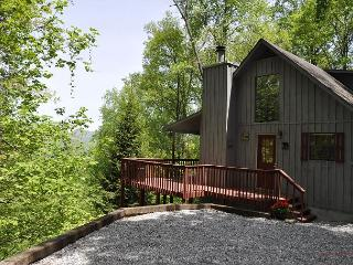 SERENITY  offers 3/3 with outstanding mountain views, pet friendly! - Blairsville vacation rentals