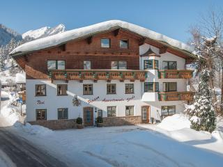 Apartment 2 Pers. / Zugspitz Arena - Bichlbach vacation rentals