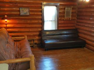 100yr old Log Cabin on River near Pictured Rocks - Munising vacation rentals