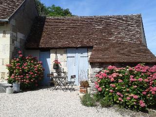 Maison vigneronne de Touraine proche Chenonceaux - Chissay-en-Touraine vacation rentals