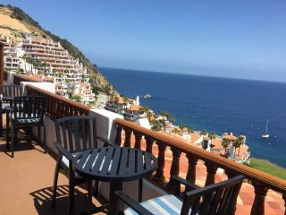 Nice 2 bedroom Catalina Island Villa with Internet Access - Catalina Island vacation rentals